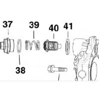 Kit Thermostat Johnson Evinrude 175CV