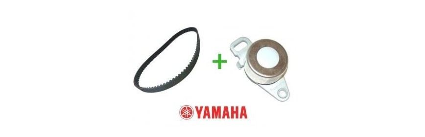 Kit de distribution Yamaha Hors Bord